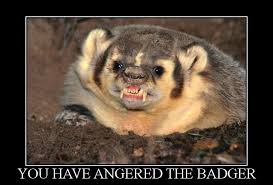 angry_badger
